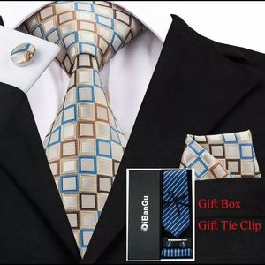 Other - Men's Silk Coordinated Tie Set, Silver Squared